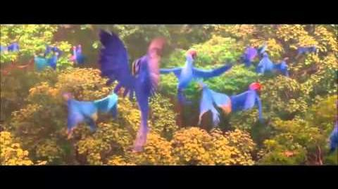 Rio 2 - Beautiful Creatures (Brazilian Portuguese) HD Soundtrack