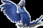 Rio2-Blu-3-icon
