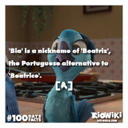 Rio-Wiki-100Days100Facts-017