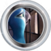 Silver Badge Birdnapped