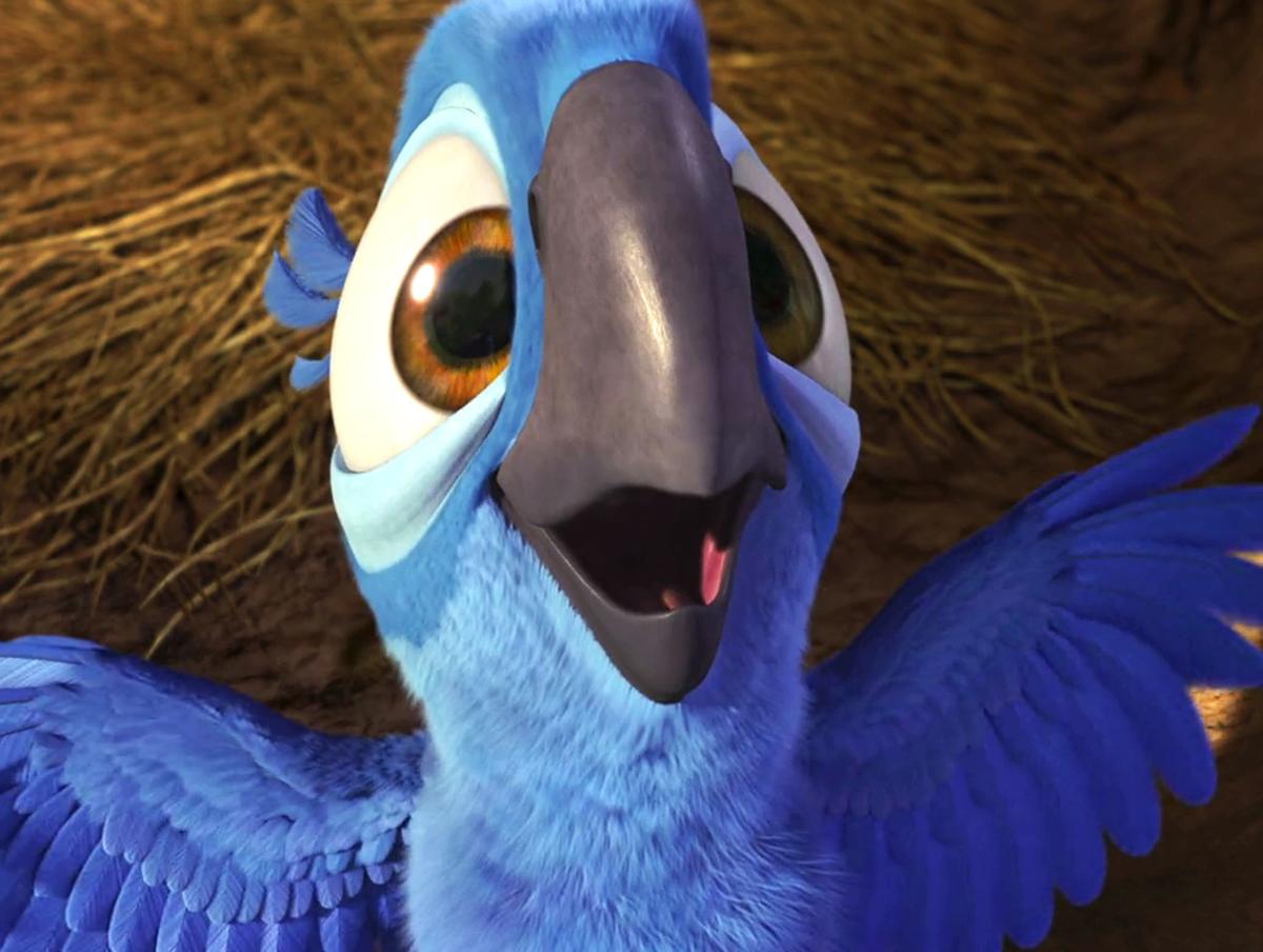 Bluebird png images | PNGEgg | 904x1200