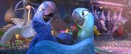 Blu and Jewel dance 3
