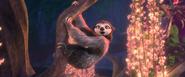 Rapping sloth in batucada familia