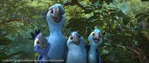 Rio 2 Jewel Tiago Bia and Carla
