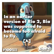 Rio-Wiki-100Days100Facts-013