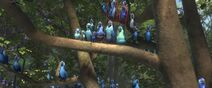 Rio2-disneyscreencaps.com-9736