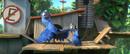 Blu 100-Jewel 100 63