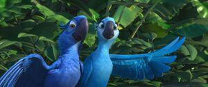 Jade e Blu7