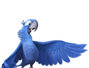 Blu hd