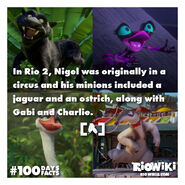 Rio-Wiki-100Days100Facts-020