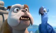 Луис и Голубчик (3)