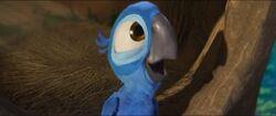 Голубчик в детстве