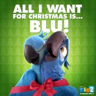 All I want for Christmas is...BLU!