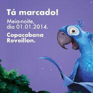 C R Rio2 04