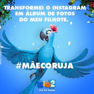 Rio 2 mãecoruja 03 - jade