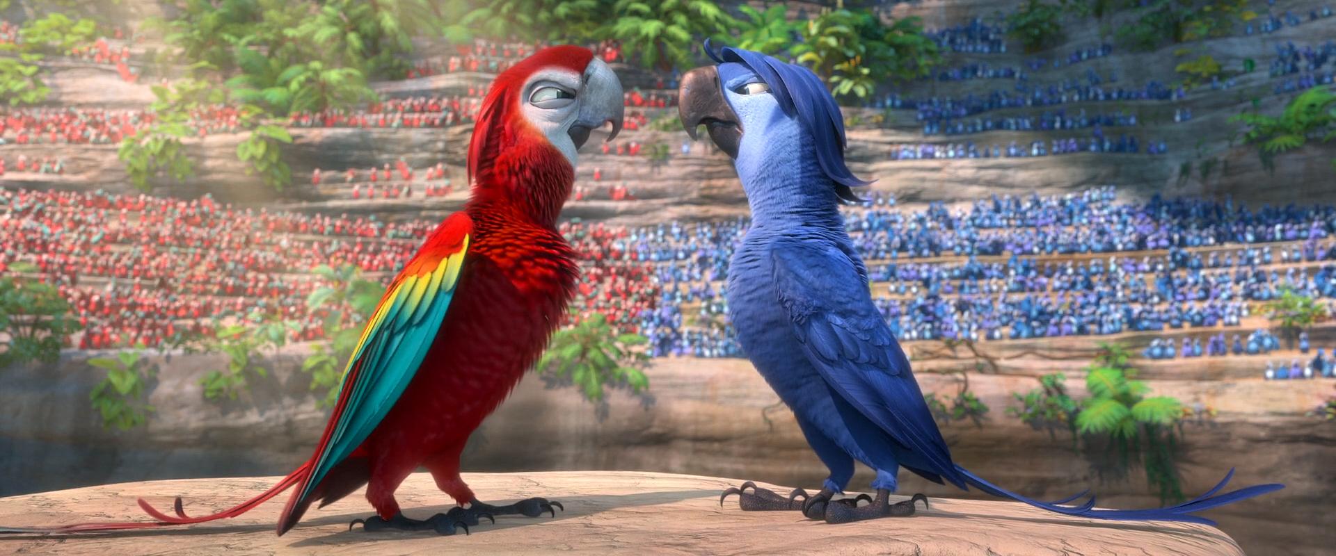 картинки из рио все птицы самое впечатляющее незабываемое