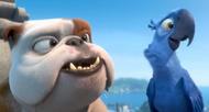 Луис и Голубчик (1)