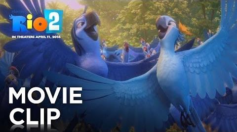 Rio 2 Beautiful Creatures 20th Century Fox
