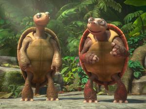 Infobox-Capoeira Turtle