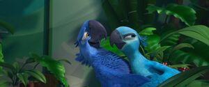 Jade e Blu1