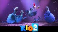 Youloveit ru rio 2 oboi08