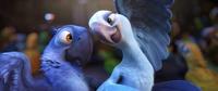 Blu y Perla bailando