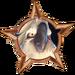 Bronze Badge Nigel