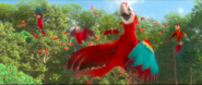 Felipe and scarlet macaws