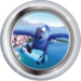 Silver Badge Macaw Flyer
