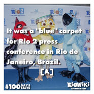 Rio-Wiki-100Days100Facts-008