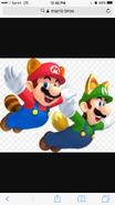 RCT Mario & Luigi