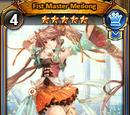Fist Master Meilong