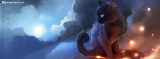 Mystery ( the Black Cat)