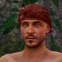 Rotes Kopftuch