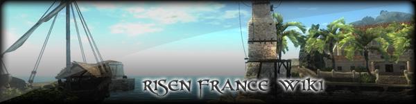 Bannerrisen