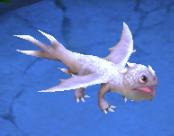 Darkvarg Baby