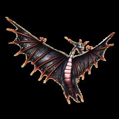 Typhoomerang Titan - NBG