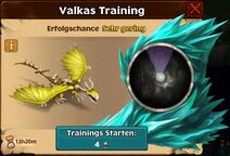 Fools-Gold Valka First Chance