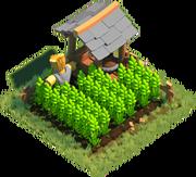 Building Farm 1 5