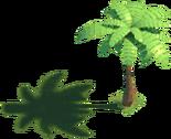 Coconut Tree 1