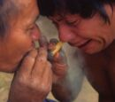 Tobacco/History