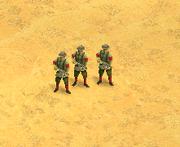 Manchu Infantry Screen