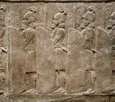 Hoplites/History