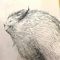 Yeti sketch