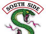 Южные Змеи