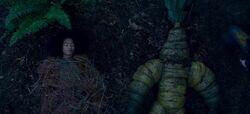 CAOS-Caps-2x08-The-Mandrake-72-Rosalind-Mandrake