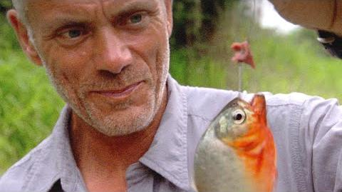 How Easy It Is to Catch Piranhas - River Monsters