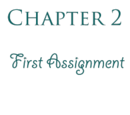 Chapter 2: First Assignment