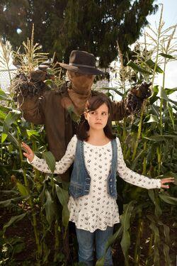 THH Scarecrow