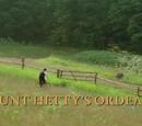 Aunt Hetty's Ordeal